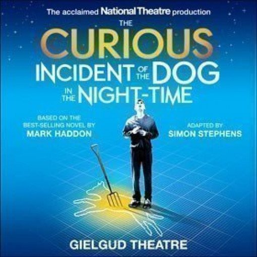 the curious incident of the dog pdf